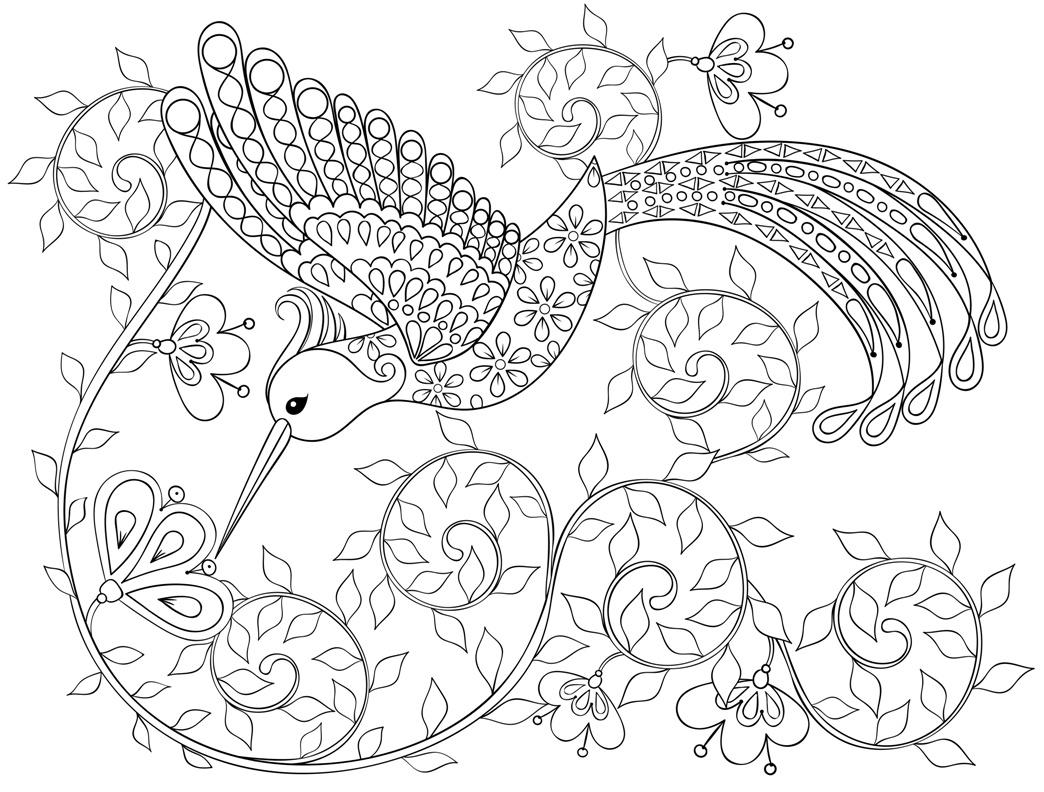 Раскраска-антистресс Колибри