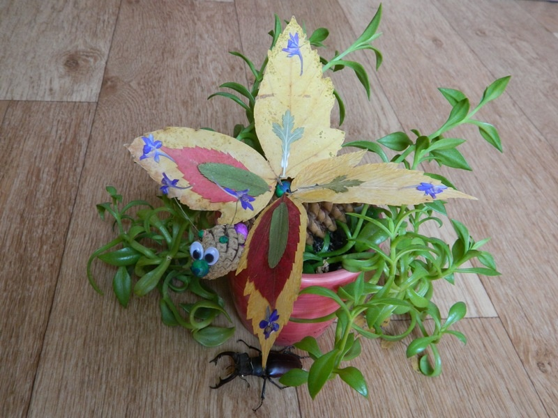 Как сделать бабочку из шишек и листьев