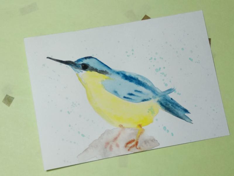 Как нарисовать скетч акварелью Яркая птичка