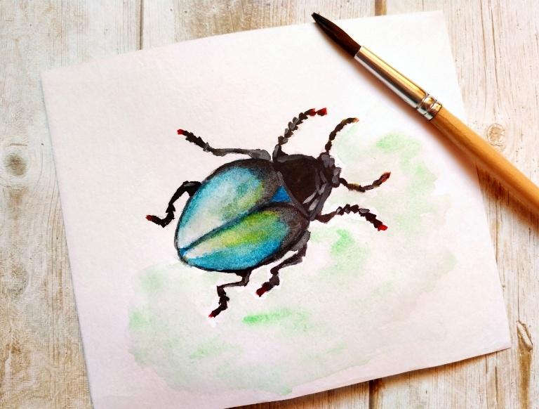 Как нарисовать акварелью жука