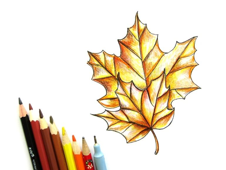 Как нарисовать кленовый лист цветными карандашами