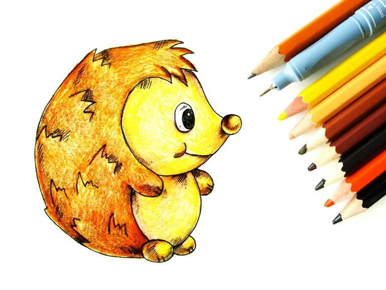Как нарисовать ёжика цветными карандашами
