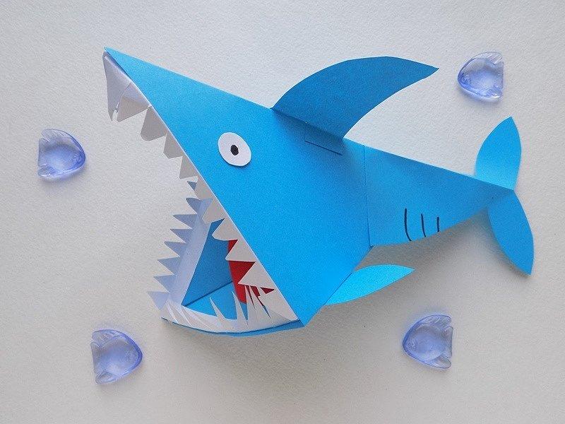 акула аппликация üçün şəkil nəticəsi