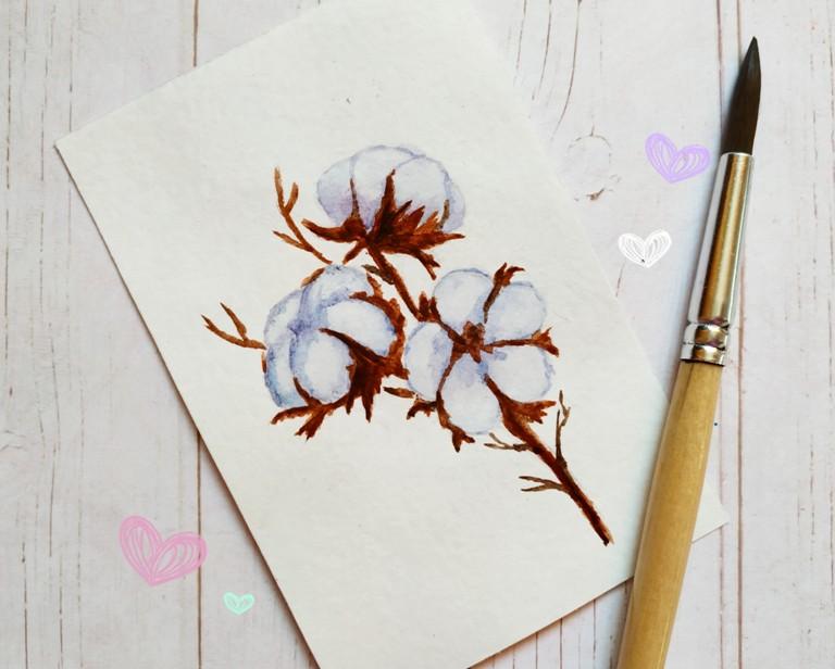Как нарисовать акварелью веточку хлопка